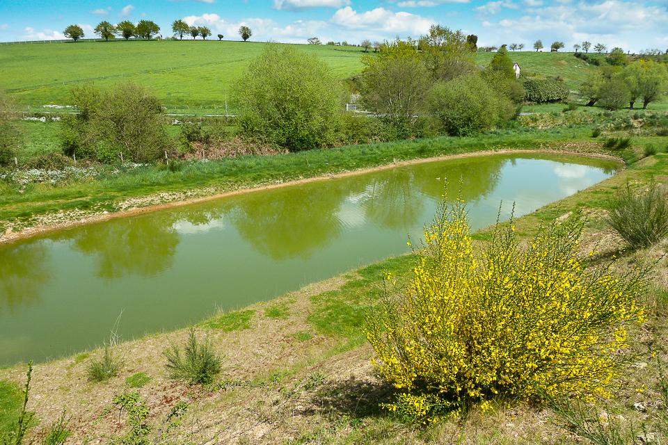 étang de pêche privatif
